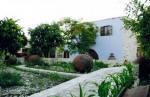 Garden Kamara House in Kato Drys - An agrotourism holiday house in Cyprus - The garden again.