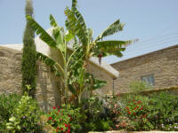 Yasmini villa in Tochni in Cyprus - Part of the Agrotourism project - a carefully restored self catering villa for your holiday rentals in Cyprus